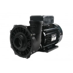 Waterway Massage Pump 2 HP...